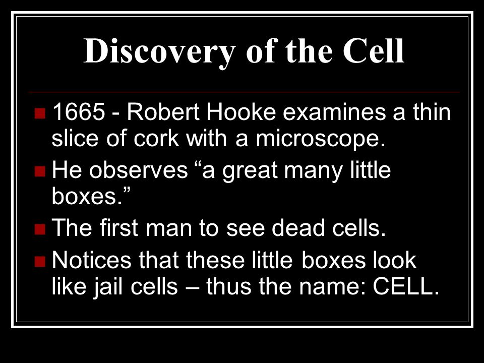 Discovery of the Cell 1665 - Robert Hooke examines a thin slice of cork with a microscope. He observes a great many little boxes. The first man to see