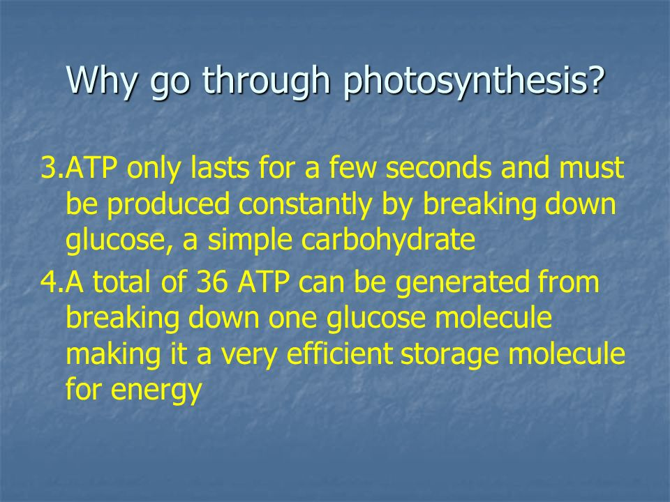 Why go through photosynthesis? 3.ATP only lasts for a few seconds and must be produced constantly by breaking down glucose, a simple carbohydrate 4.A