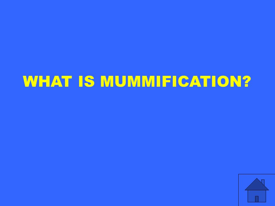 WHAT IS MUMMIFICATION