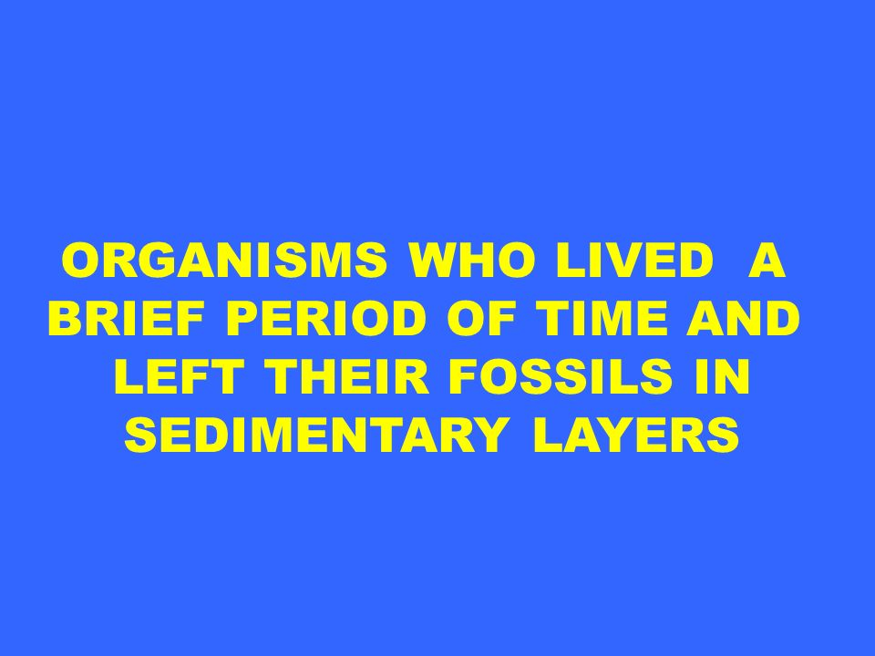 ORGANISMS WHO LIVED A BRIEF PERIOD OF TIME AND LEFT THEIR FOSSILS IN SEDIMENTARY LAYERS