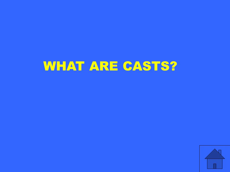 WHAT ARE CASTS