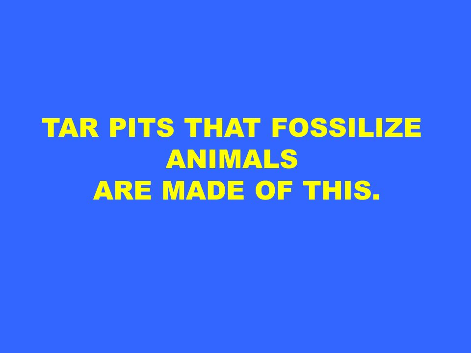 TAR PITS THAT FOSSILIZE ANIMALS ARE MADE OF THIS.