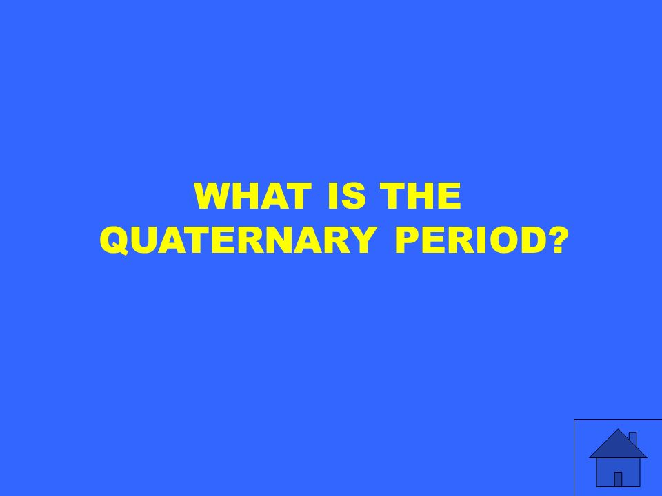 WHAT IS THE QUATERNARY PERIOD