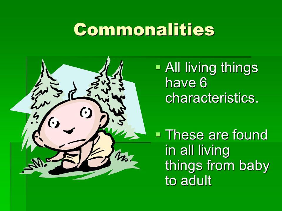 1 st Principle – Evolution Natural Selection- facilitator of evolution – characteristics most favorable – live on.
