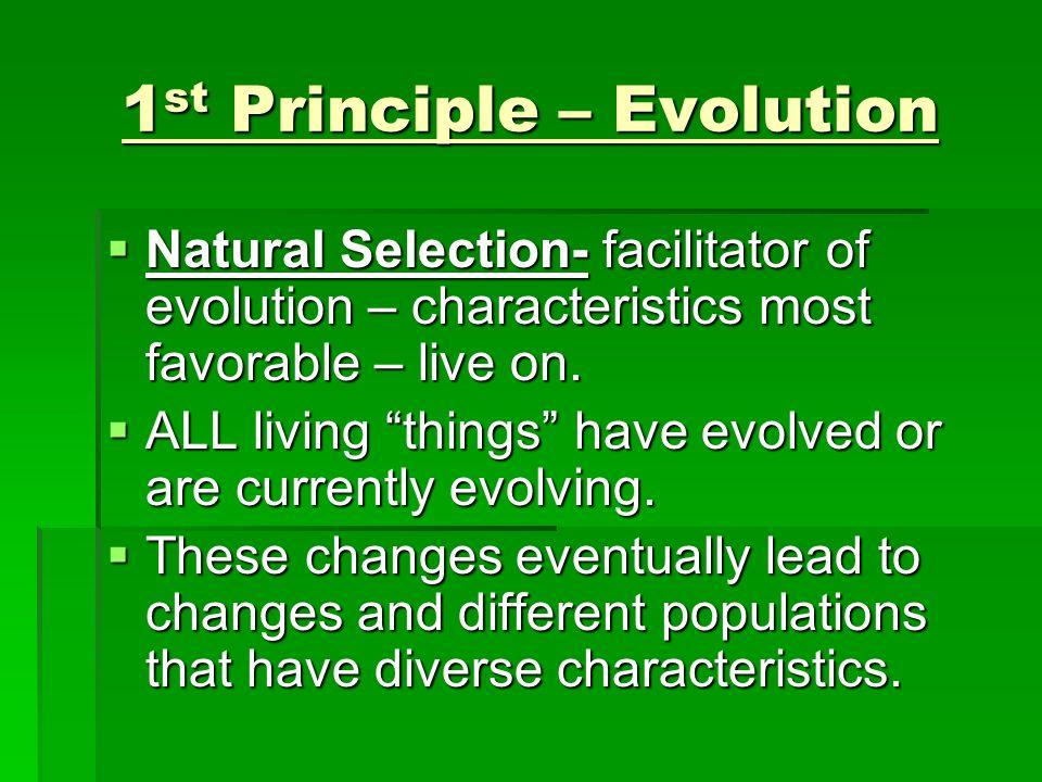 1 st Principle – Evolution Natural Selection- facilitator of evolution – characteristics most favorable – live on. Natural Selection- facilitator of e