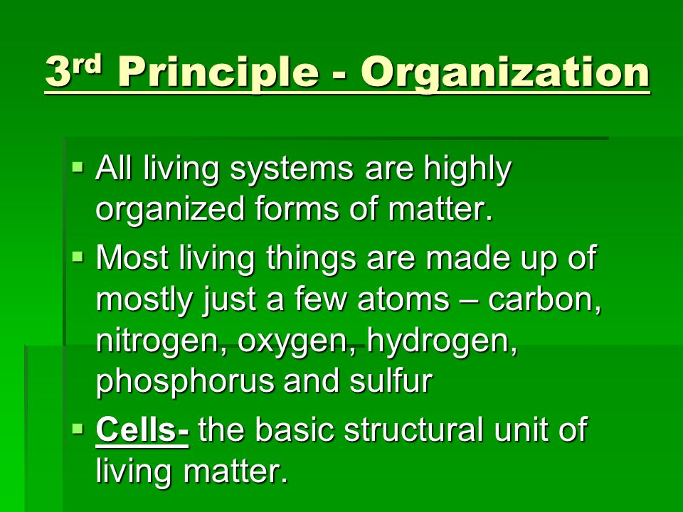 3 rd Principle - Organization All living systems are highly organized forms of matter. All living systems are highly organized forms of matter. Most l