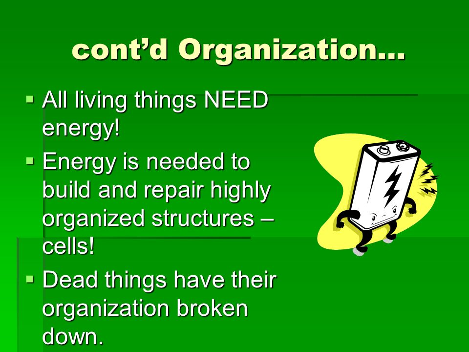 contd Organization… All living things NEED energy! All living things NEED energy! Energy is needed to build and repair highly organized structures – c