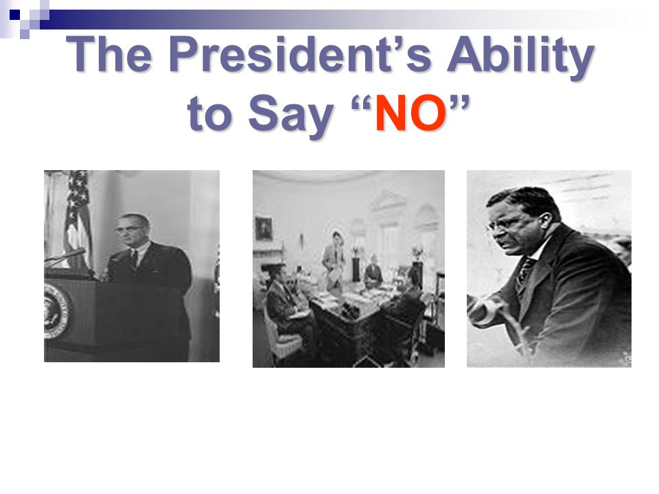 The Presidents Ability to Say NO