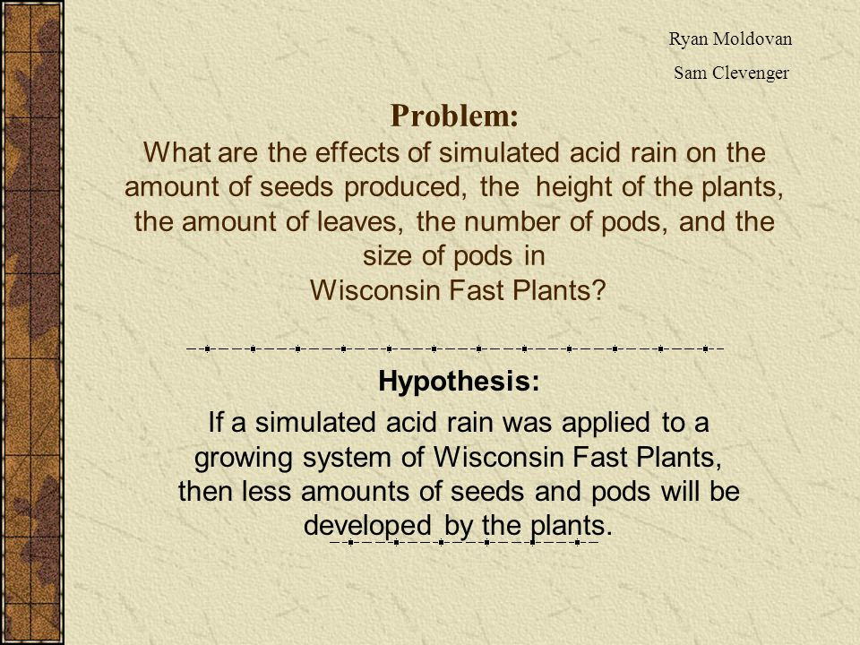Problem: What are the effects of simulated acid rain on the amount of seeds produced, the height of the plants, the amount of leaves, the number of pods, and the size of pods in Wisconsin Fast Plants.