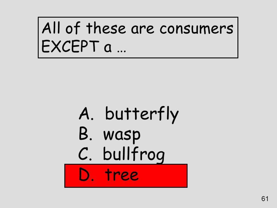 All of these are consumers EXCEPT a … A. butterfly B. wasp C. bullfrog D. tree 61