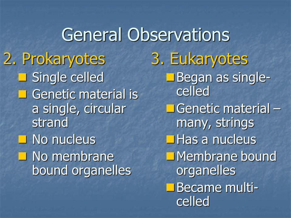 General Observations 2. Prokaryotes Single celled Single celled Genetic material is a single, circular strand Genetic material is a single, circular s