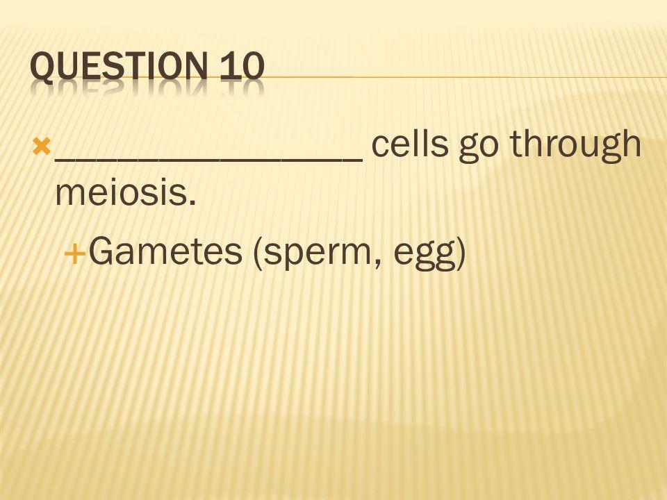 _______________ cells go through meiosis. Gametes (sperm, egg)