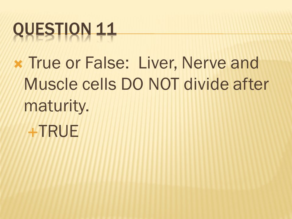 True or False: Liver, Nerve and Muscle cells DO NOT divide after maturity. TRUE