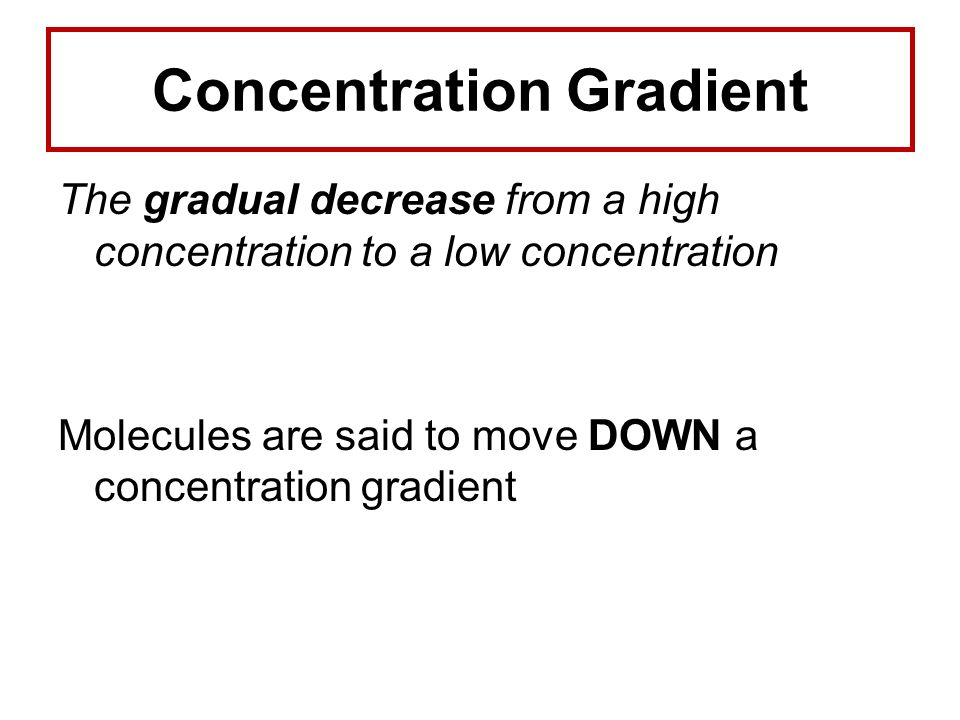 Concentration Gradient The gradual decrease from a high concentration to a low concentration Molecules are said to move DOWN a concentration gradient