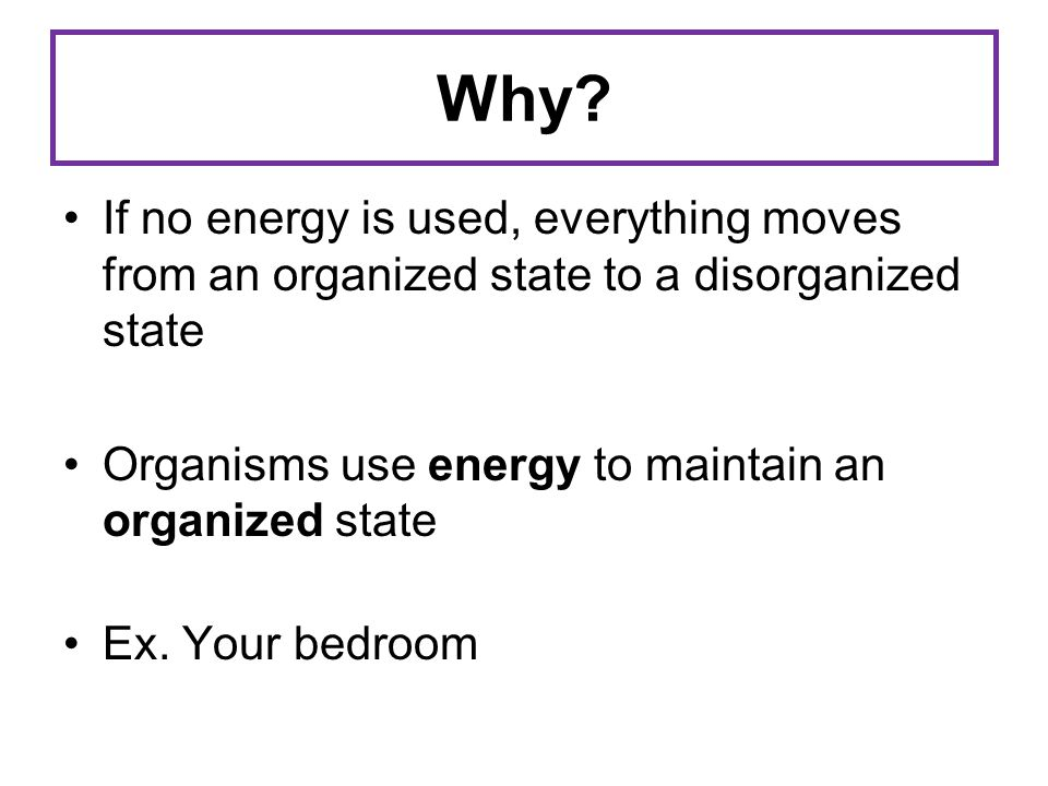 Why? If no energy is used, everything moves from an organized state to a disorganized state Organisms use energy to maintain an organized state Ex. Yo