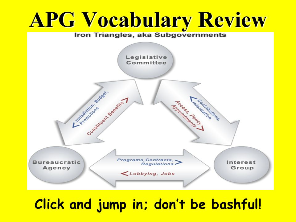 APG Vocabulary Review Click and jump in; dont be bashful!