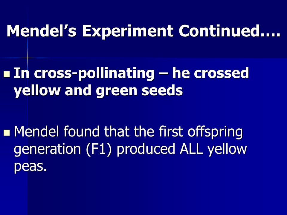 Mendels Experiment Continued….