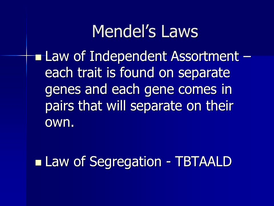 Mendels Laws Law of Independent Assortment – each trait is found on separate genes and each gene comes in pairs that will separate on their own.
