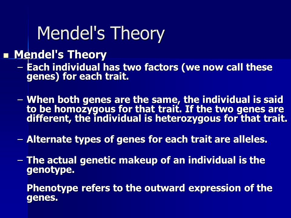 Mendel's Theory Mendel's Theory Mendel's Theory –Each individual has two factors (we now call these genes) for each trait. –When both genes are the sa