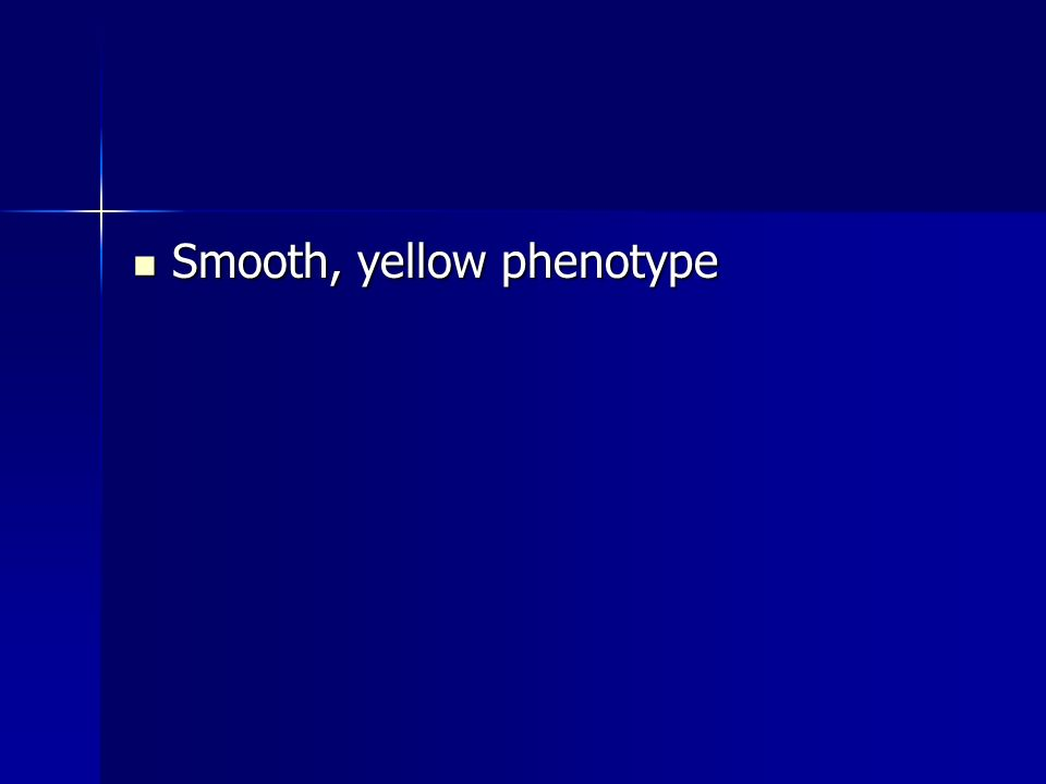Smooth, yellow phenotype Smooth, yellow phenotype