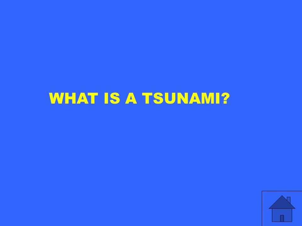 WHAT IS A TSUNAMI?