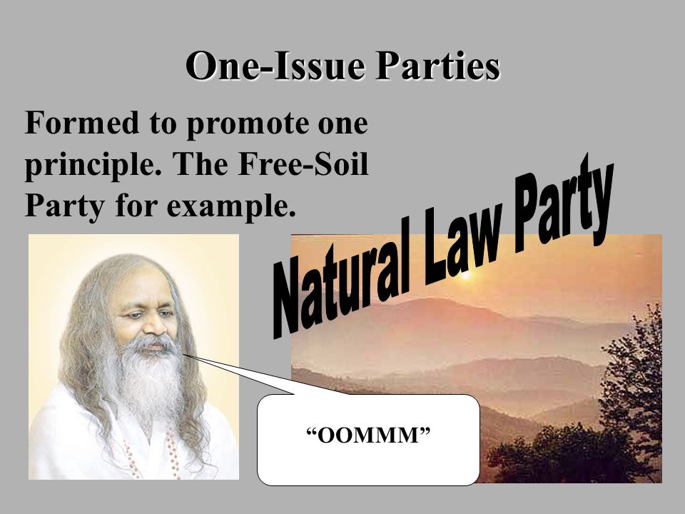 One-Issue Parties Formed to promote one principle. The Free-Soil Party for example. OOMMM