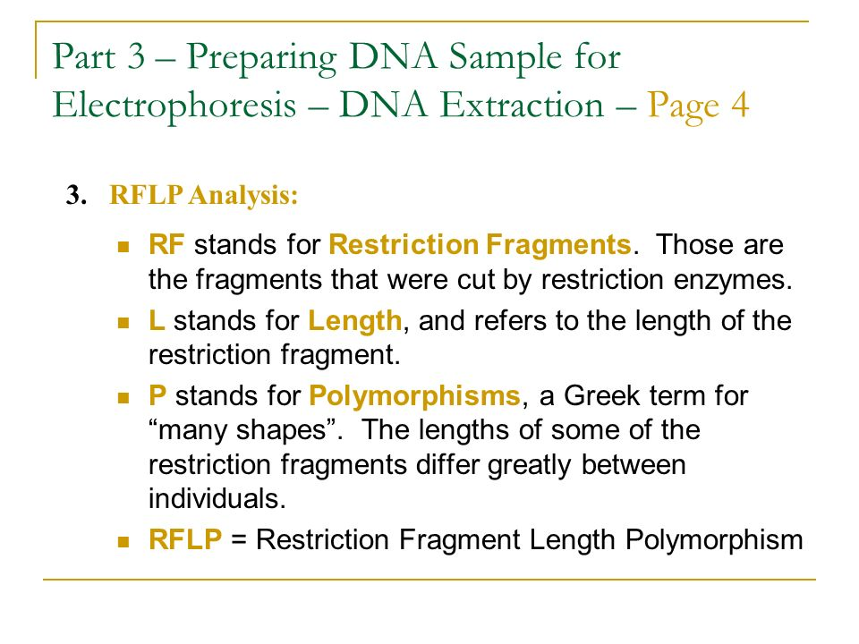 Part 3 – Preparing DNA Sample for Electrophoresis – DNA Extraction – Page 4 RF stands for Restriction Fragments. Those are the fragments that were cut