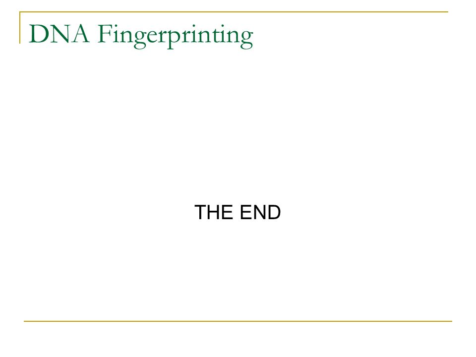 DNA Fingerprinting THE END