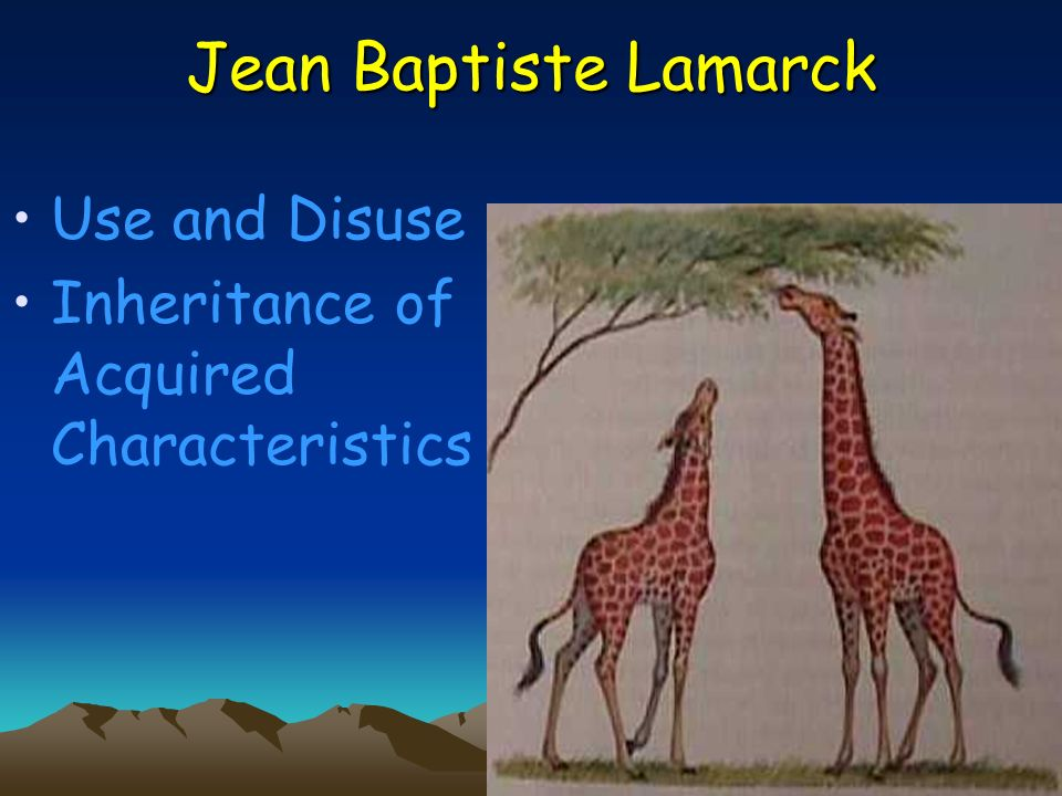 Jean Baptiste Lamarck Use and Disuse Inheritance of Acquired Characteristics