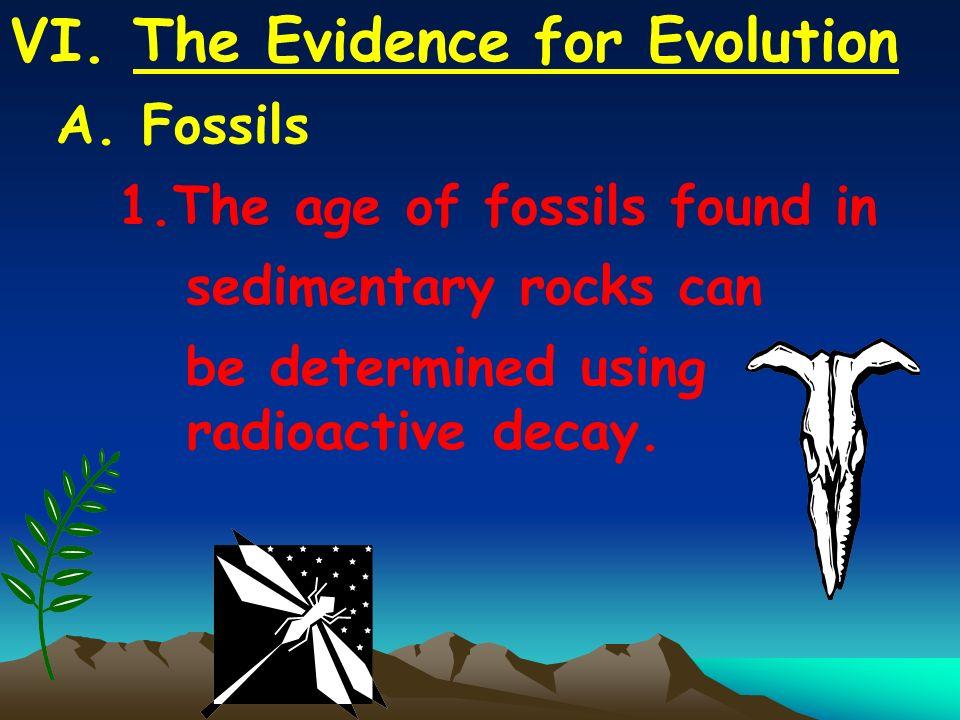 VI.The Evidence for Evolution A.