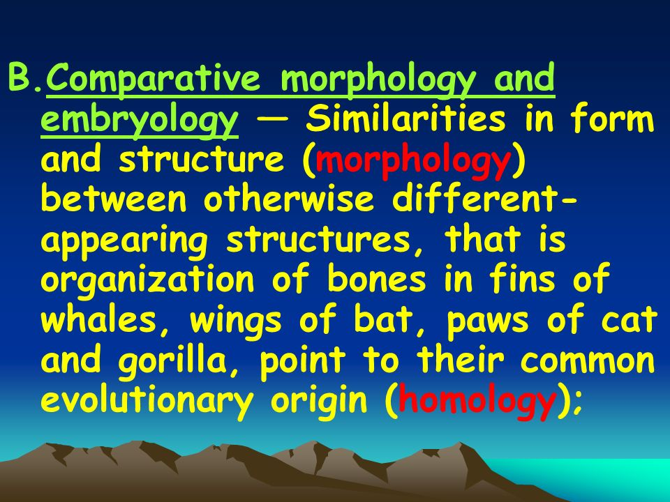 B.Comparative morphology and embryology Similarities in form and structure (morphology) between otherwise different- appearing structures, that is organization of bones in fins of whales, wings of bat, paws of cat and gorilla, point to their common evolutionary origin (homology);
