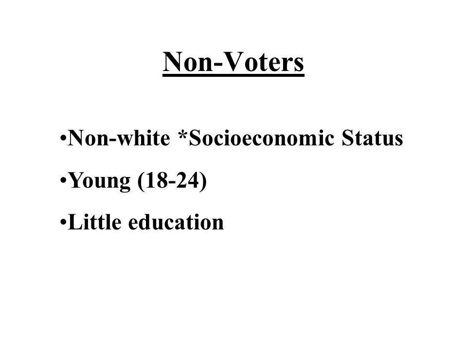 Non-Voters Non-white *Socioeconomic Status Young (18-24) Little education