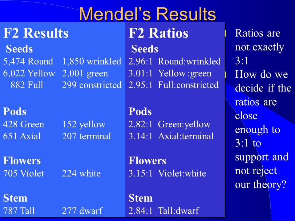 Mendels Results F2 Results Seeds 5,474 Round1,850 wrinkled 6,022 Yellow2,001 green 882 Full299 constricted Pods 428 Green152 yellow 651 Axial207 terminal Flowers 705 Violet224 white Stem 787 Tall277 dwarf F2 Results Seeds 5,474 Round1,850 wrinkled 6,022 Yellow2,001 green 882 Full299 constricted Pods 428 Green152 yellow 651 Axial207 terminal Flowers 705 Violet224 white Stem 787 Tall277 dwarf F2 Ratios Seeds 2.96:1 Round:wrinkled 3.01:1Yellow:green 2.95:1Full:constricted Pods 2.82:1Green:yellow 3.14:1Axial:terminal Flowers 3.15:1Violet:white Stem 2.84:1Tall:dwarf F2 Ratios Seeds 2.96:1 Round:wrinkled 3.01:1Yellow:green 2.95:1Full:constricted Pods 2.82:1Green:yellow 3.14:1Axial:terminal Flowers 3.15:1Violet:white Stem 2.84:1Tall:dwarf l Ratios are not exactly 3:1 l How do we decide if the ratios are close enough to 3:1 to support and not reject our theory