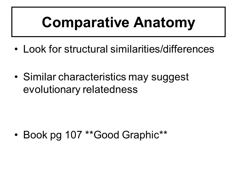 Comparative Anatomy Look for structural similarities/differences Similar characteristics may suggest evolutionary relatedness Book pg 107 **Good Graph