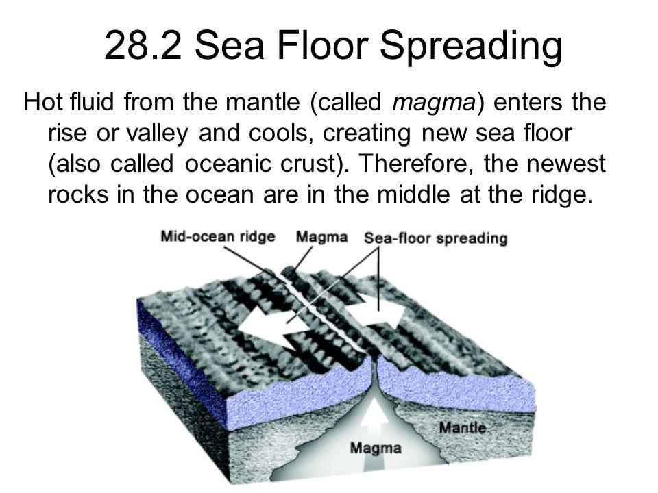 28.2 Sea Floor Spreading Hot fluid from the mantle (called magma) enters the rise or valley and cools, creating new sea floor (also called oceanic cru