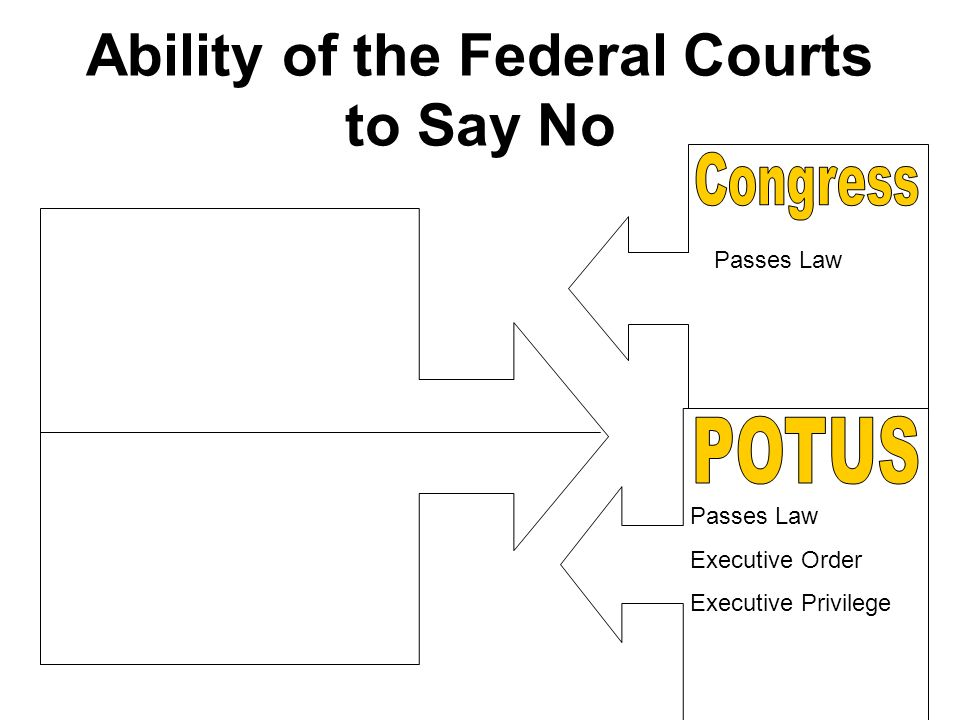 Ability of the Federal Courts to Say No Passes Law Executive Order Executive Privilege
