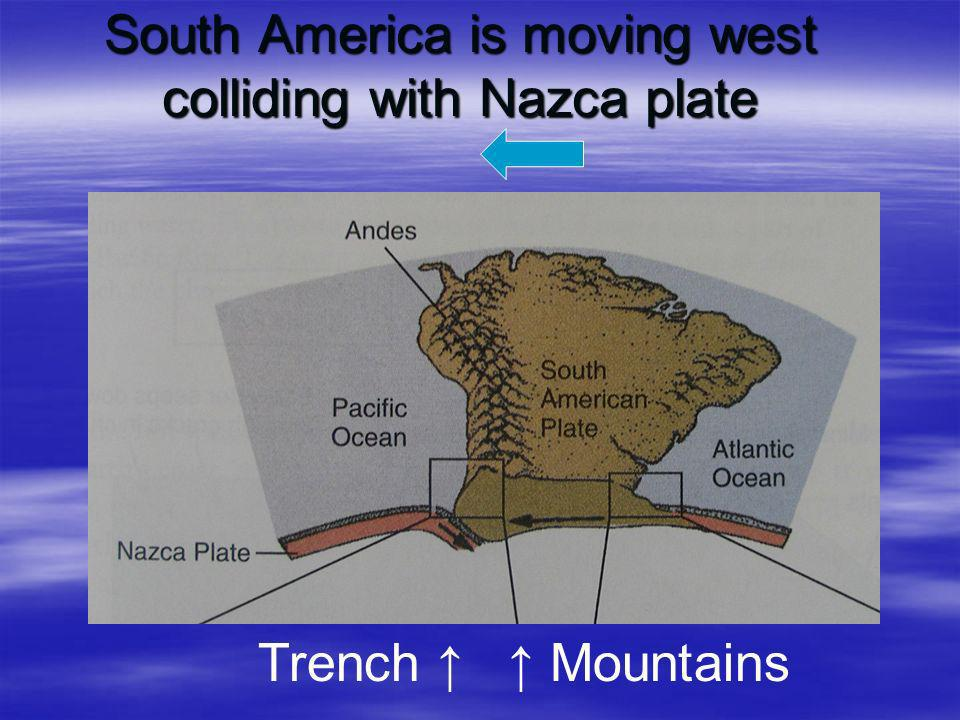 South America is moving west colliding with Nazca plate Trench Mountains