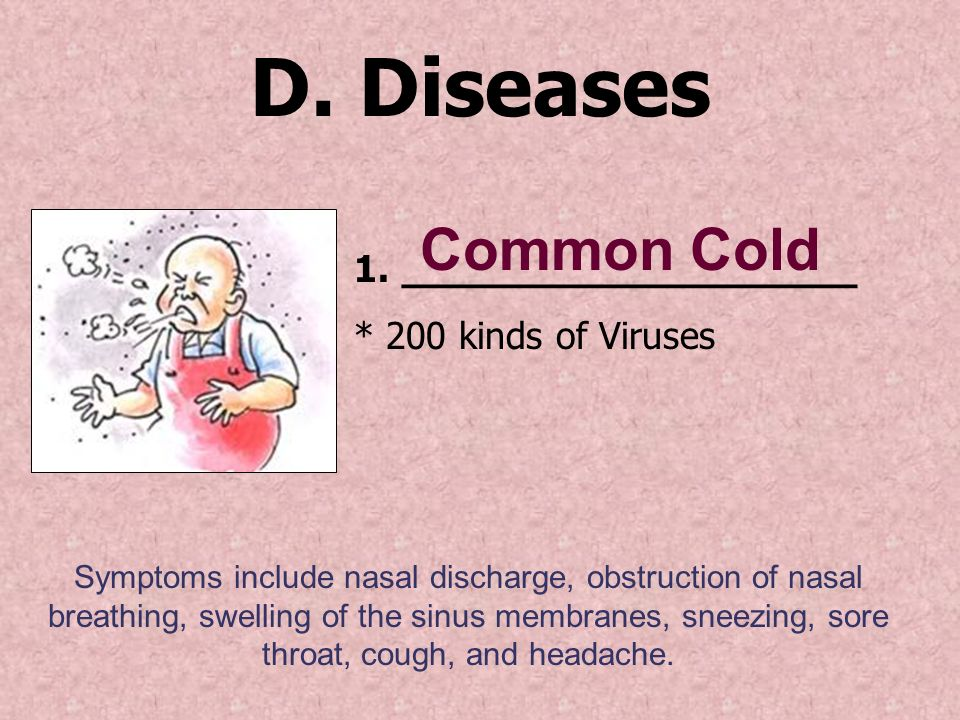 D. Diseases 1.___________________ * 200 kinds of Viruses Symptoms include nasal discharge, obstruction of nasal breathing, swelling of the sinus membr