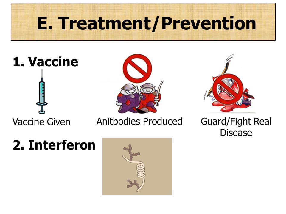 E. Treatment/Prevention 1. Vaccine 2. Interferon Vaccine Given Anitbodies Produced Guard/Fight Real Disease