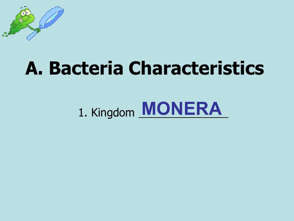 A. Bacteria Characteristics 1. Kingdom _________________ MONERA