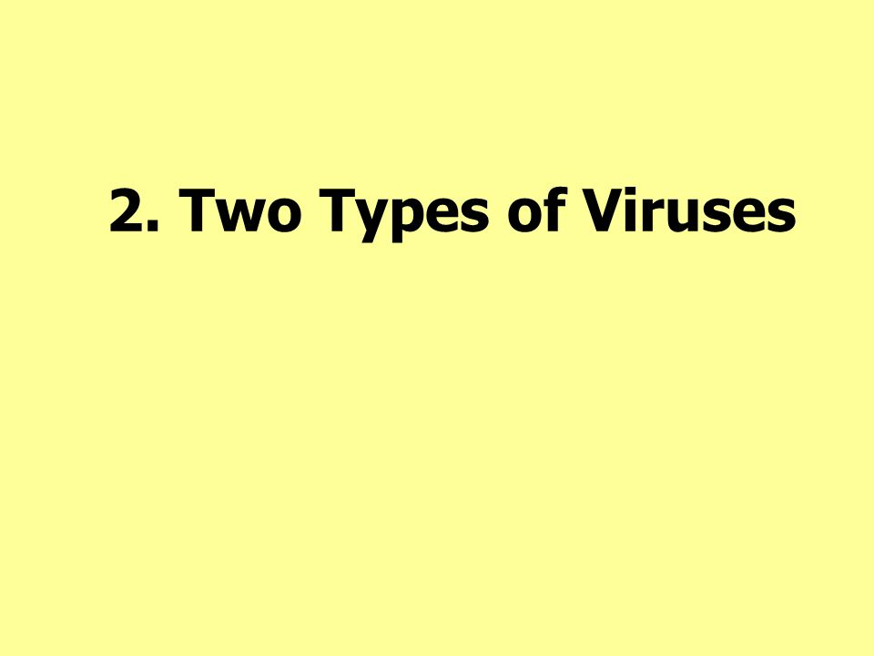 2. Two Types of Viruses