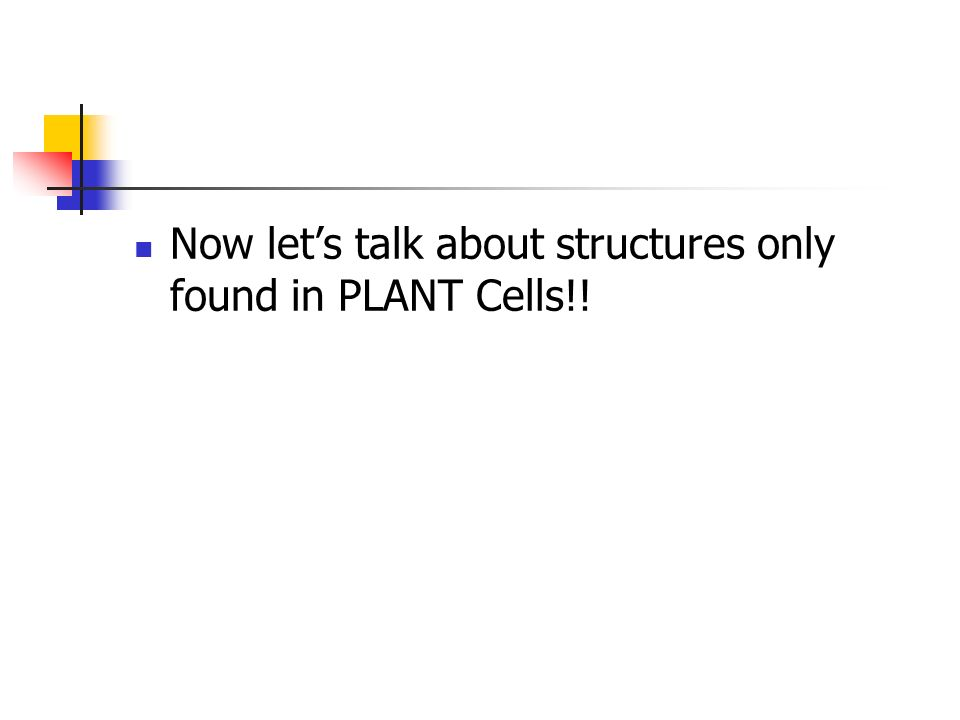 Now lets talk about structures only found in PLANT Cells!!