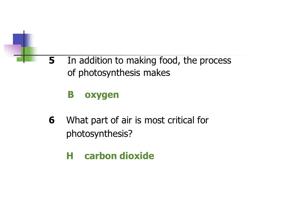 5In addition to making food, the process of photosynthesis makes B oxygen 6What part of air is most critical for photosynthesis? H carbon dioxide