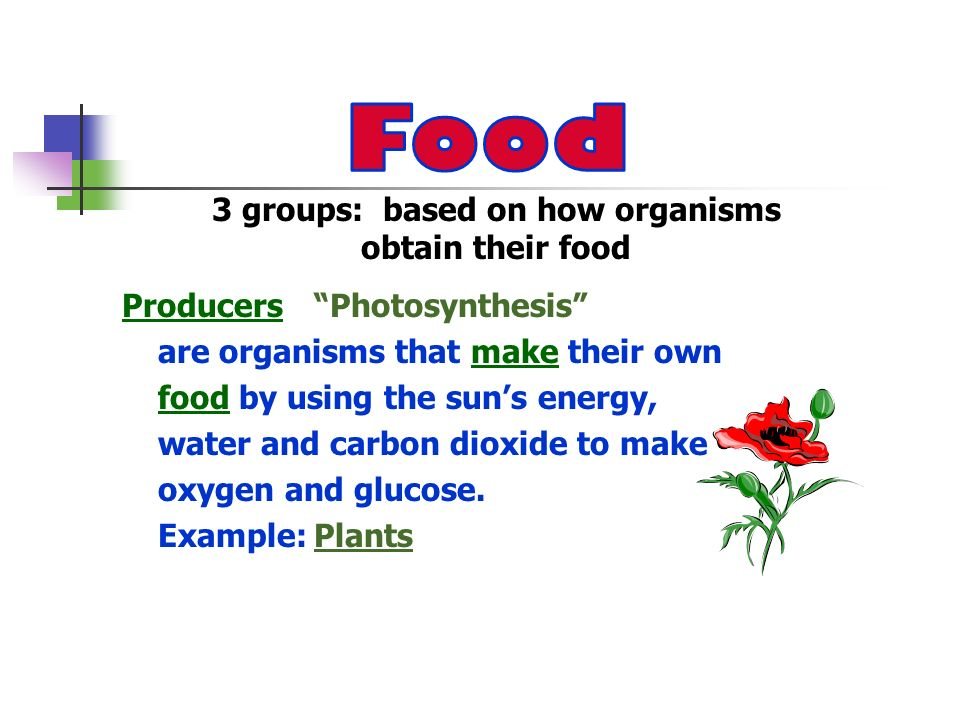 Consumers Eat are organisms that consume (eat) producers and other consumers to get energy.