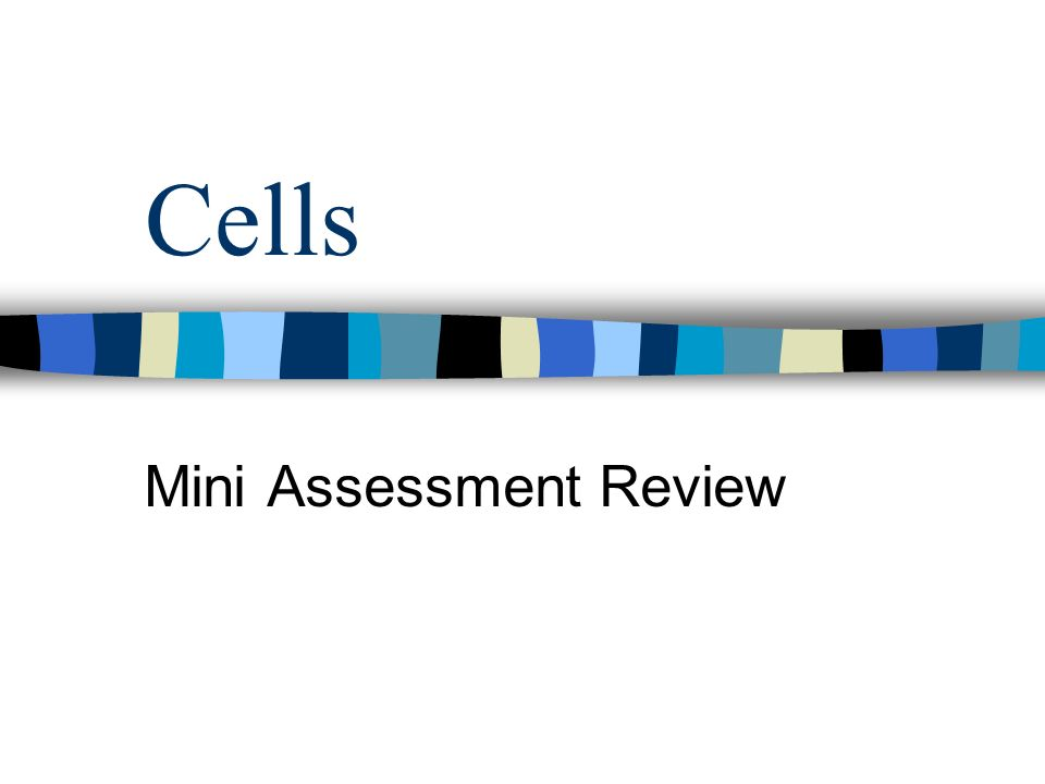 Cells Mini Assessment Review