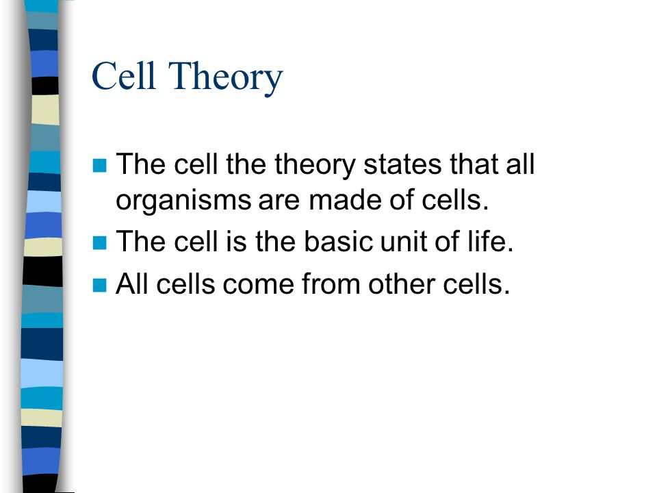 Cell Theory The cell the theory states that all organisms are made of cells.