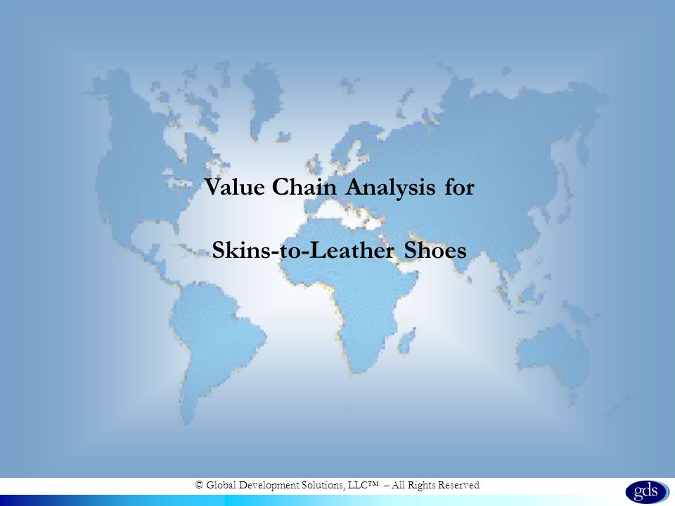 © Global Development Solutions, LLC – All Rights Reserved Value Chain Analysis for Skins-to-Leather Shoes