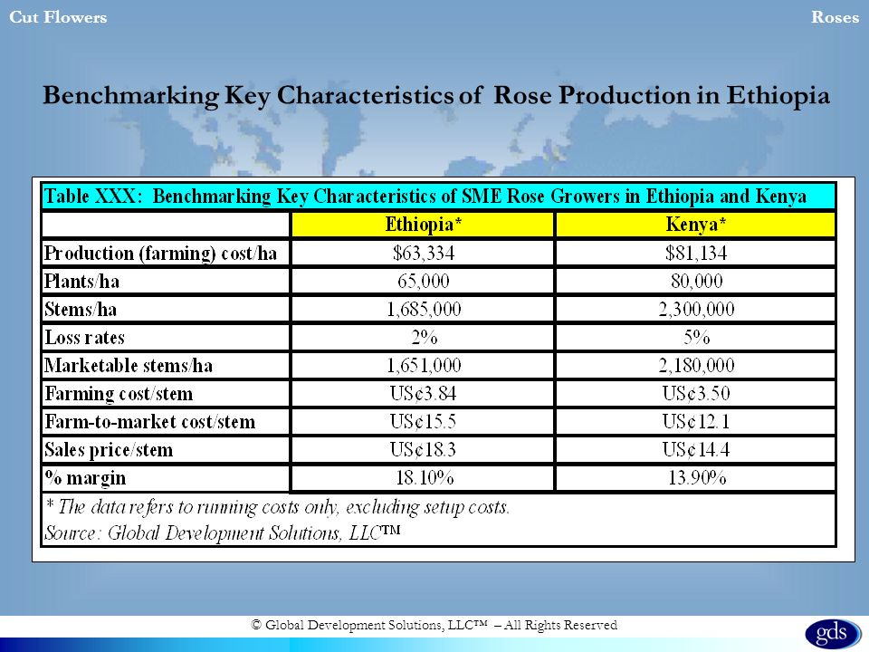 © Global Development Solutions, LLC – All Rights Reserved Cut FlowersRoses Benchmarking Key Characteristics of Rose Production in Ethiopia