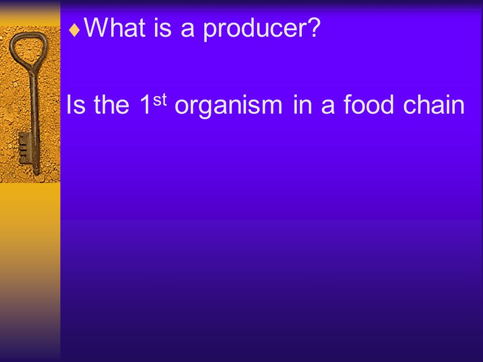 What is a producer? Is the 1 st organism in a food chain