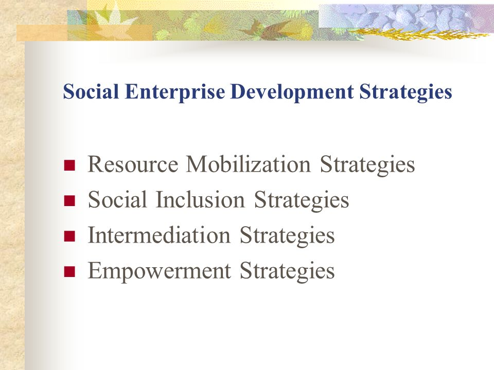 Social Enterprise Development Strategies Resource Mobilization Strategies Social Inclusion Strategies Intermediation Strategies Empowerment Strategies